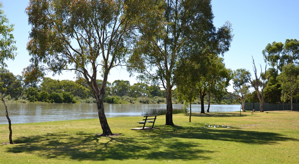 Murray River, Murray Bridge