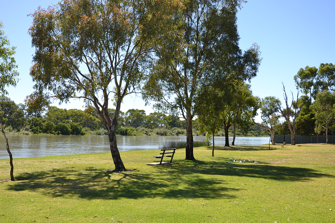 72 Bed Licenses obtained for Murray Bridge